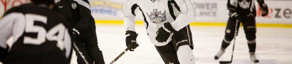Ex-Anaheim Duck Dustin Penner Sells His Newport Home