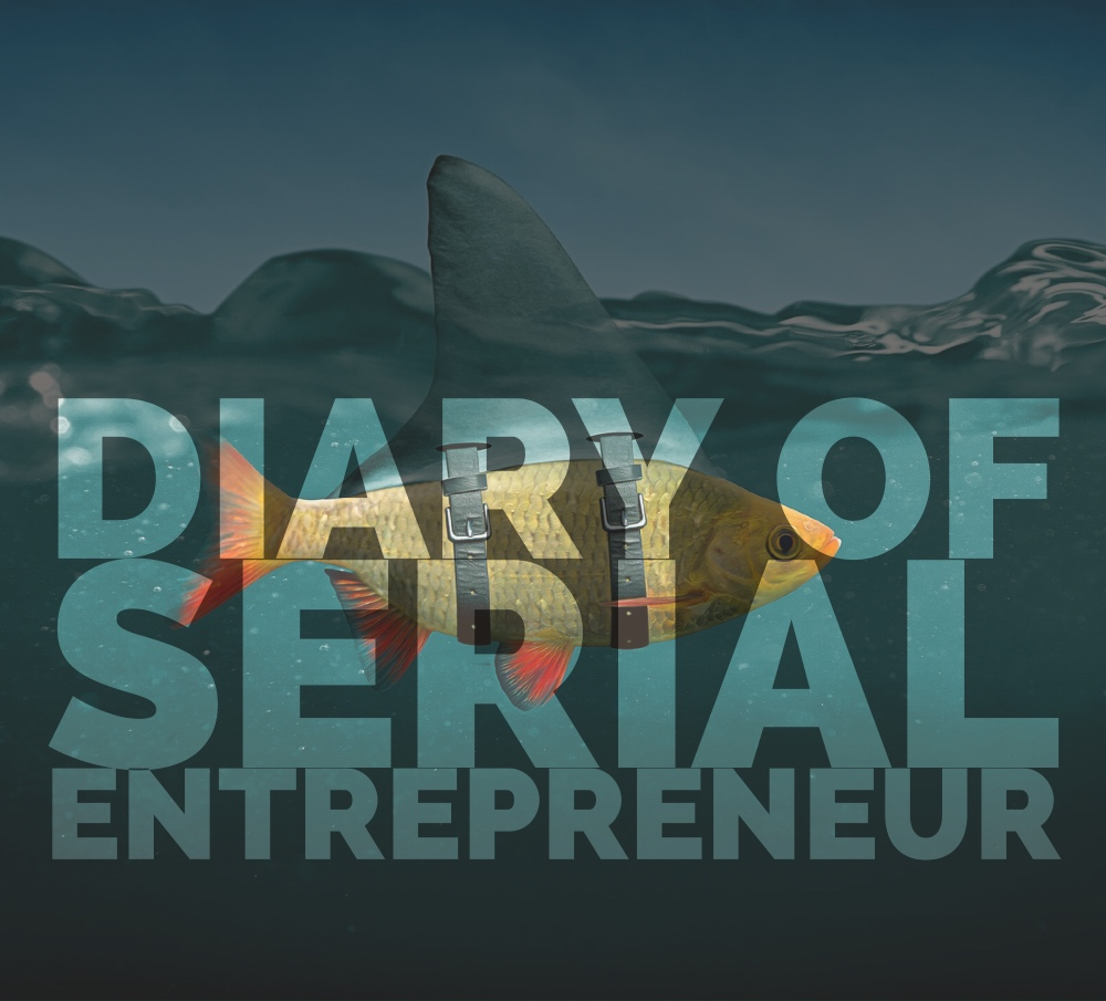Diary of a serial entrepeneur how to be a successful entrepeneur search engine optimization search engine marketing business coaching ceo coaching-2